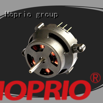 Hoprio brushless dc electric motor for electric vehicles